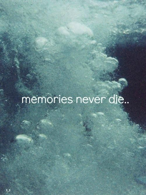 memories never die...
