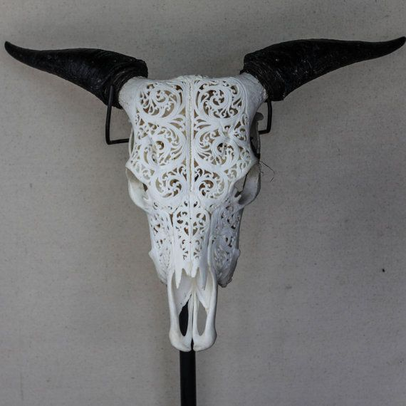 Beautiful Hand Carved Buffalo Skull with Horns from Antique Art Collection