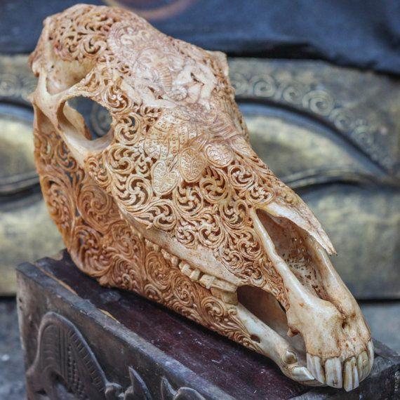 Best images about carved animal skulls on pinterest