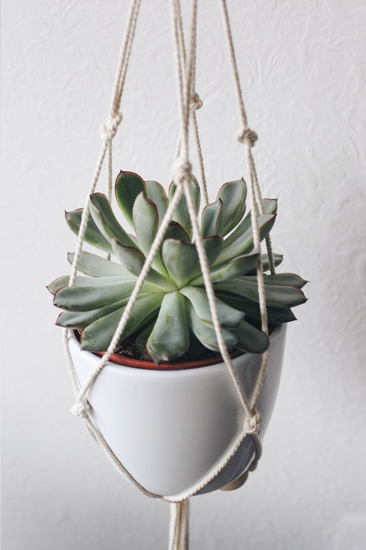 DIY – Suspension macramé pour plante - moodfeather blog