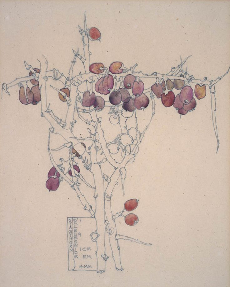 """Stagthorn, Walberswick"" 1914  (watercolour) CRE MACKINTOSH, Charles Rennie; (Scottish; 1868-1928)"