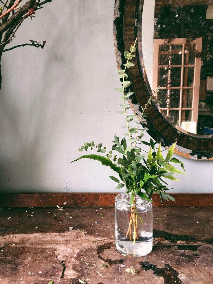 I've ordered three of these foliage arrangements from the Ace hotel florist - they're lending us the vases too.
