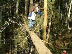 Spiele für draußen - Waldpädagogik