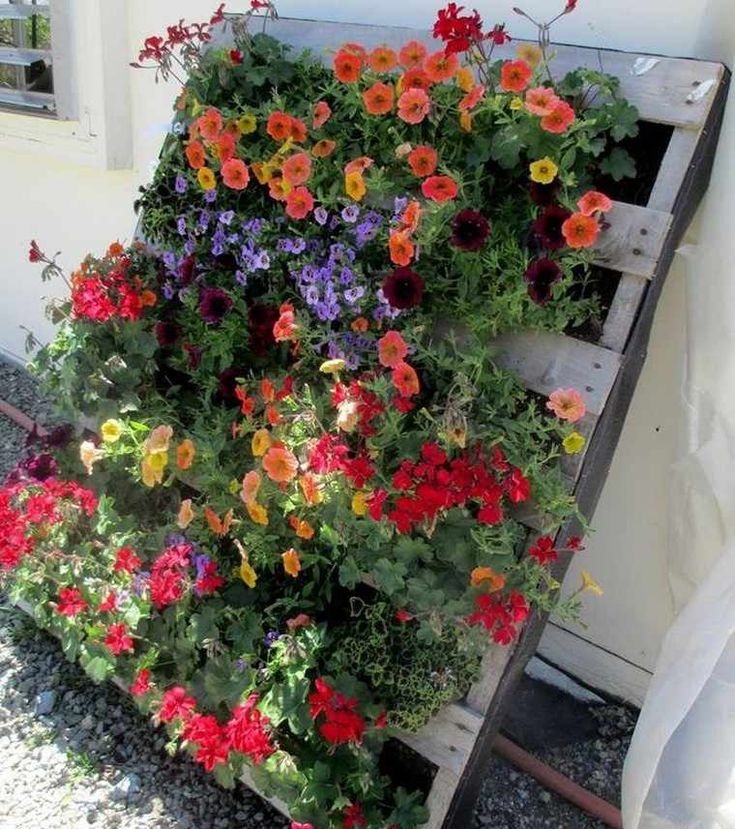 DIY hölzerner Pflanzer: einige Ideen einfach zu verwirklichen, um sein Äußeres oder Innere des Hauses zu verschönern