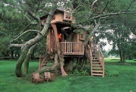 Risultati immagini per case sull'albero più belle del mondo