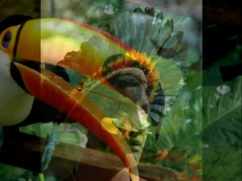 MUSIC  Brazilian Portuguese - Influences of the Tupi-Guarani