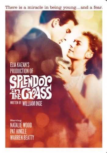 Splendor In The Grass; Natalie Wood and Warren Beatty. It's Beatty's screen debut. I'll always remember the first time I watched this movie. Both Natalie and Warren are superb ~