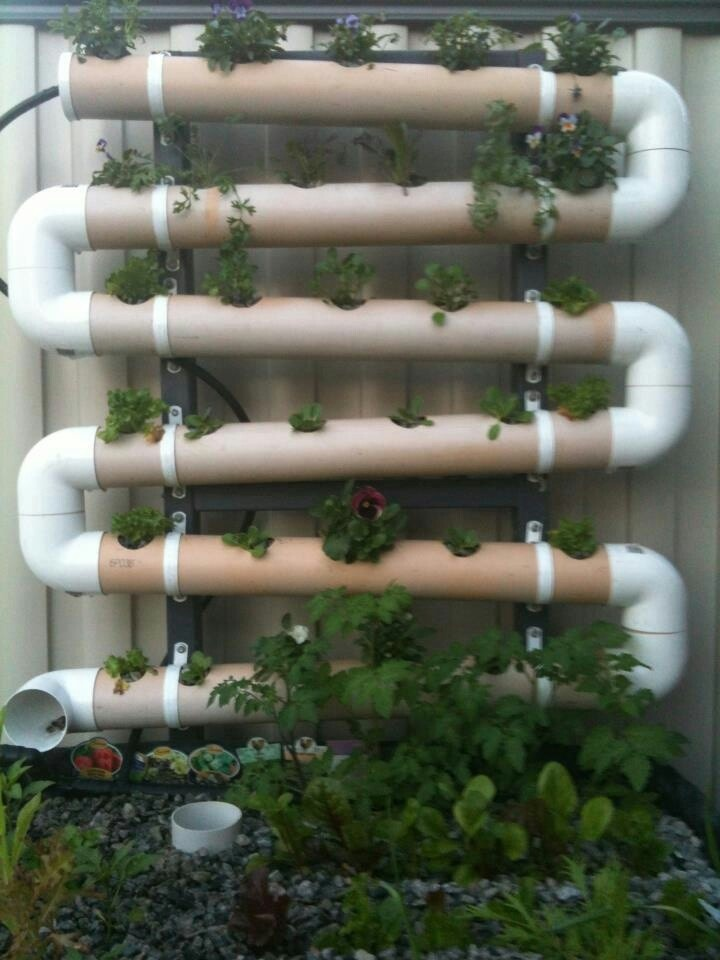 16 best hydroponic gardens from canadian wholesale for Koi pond hydroponics