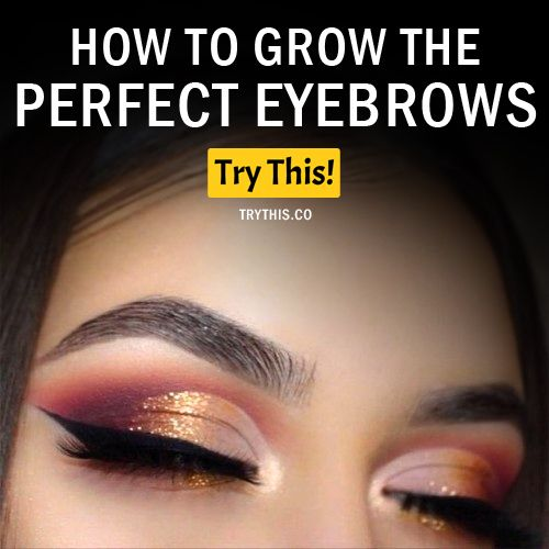 Best 25 How To Grow Eyebrows Ideas On Pinterest How To