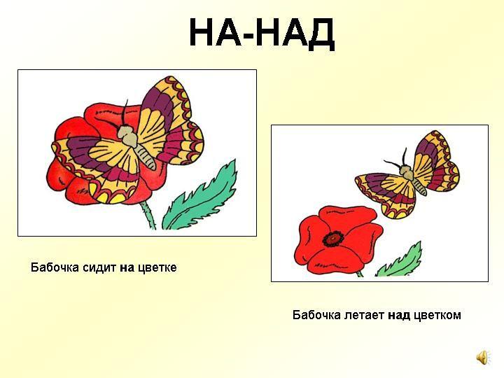 На-над De vlinder zit op de bloem. De vlinder vliegt over de bloem.