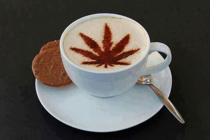 You Can Consume Cannabis Legally At The Coffee Joint In Denver http://sprudge.com/you-can-consume-cannabis-legally-at-the-coffee-joint-in-denver-130933.html
