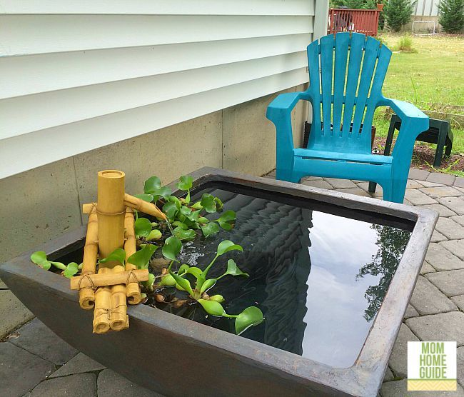Add a a beautiful patio pond to the patio for the lovely sounds of trickling water. It's also beautiful to look at the fish and plants! This pond is from Aquascape!