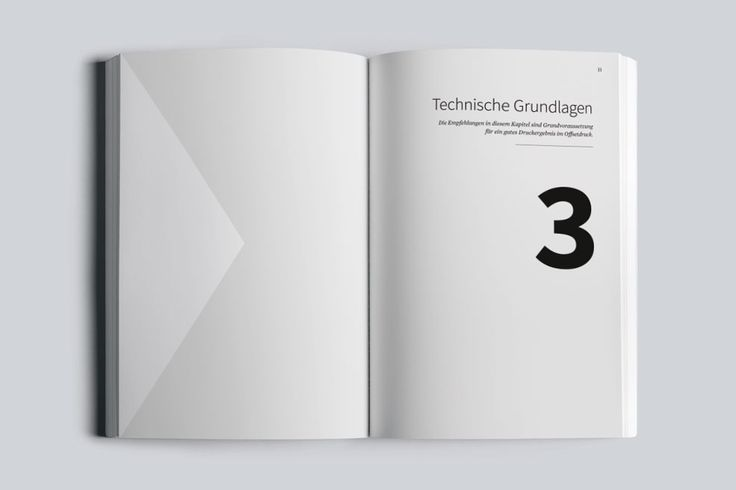 Buch | Reinzeichnung und Druckvorstufe mit InDesign