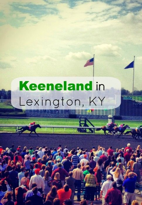 An attraction that is a favorite for locals and tourists alike. You can watch live horse racing in April and October each year at Keeneland in Lexington, Kentucky. The grounds are beautiful and you can also take a free self guided tour while you are there.