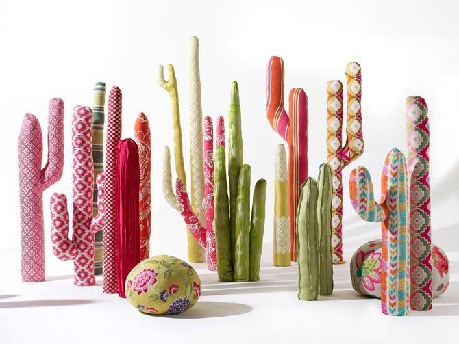 Cacti cactus coloured cacti Colored cactus