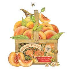 Mary Lake Thompson ~ Sweet Peaches