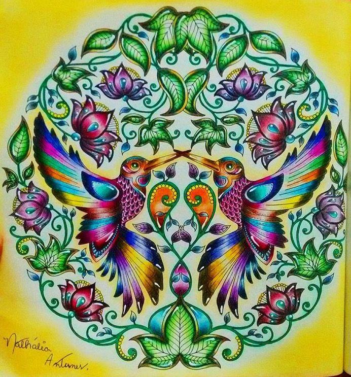 Hummingbirds in Secret Garden colouring book