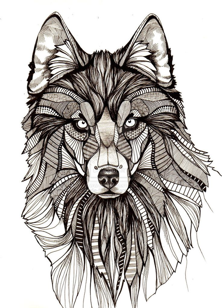 wolf drawings - Buscar con Google