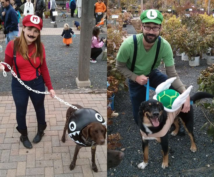 People & pet Super Mario Bros. costumes