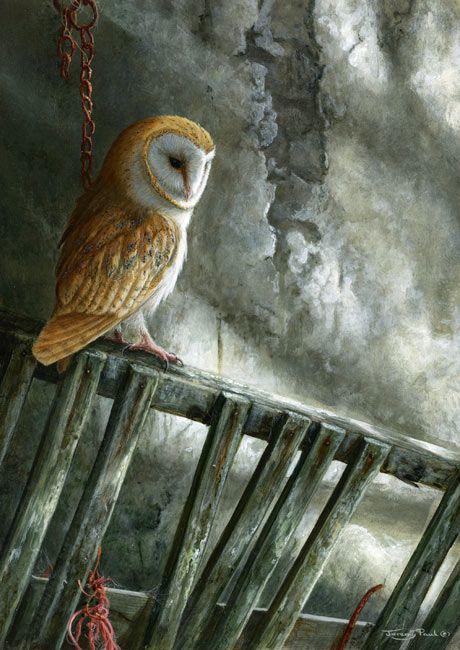 Galleries | Jeremy Paul - Wildlife Artist                                                                                                                                                                                 More