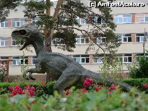 P08 [JUN-2015] Dinozauri în Sibiu... Unde? Unde? La Muzeul de Istorie Naturală…