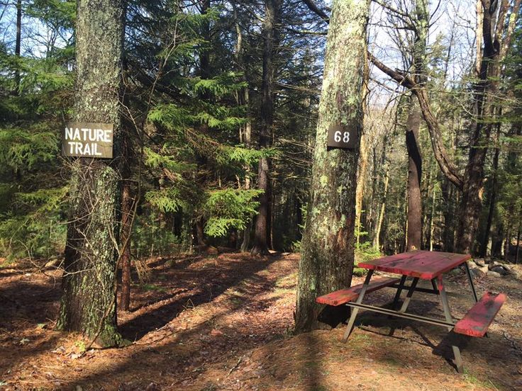 So You Want to be a Work Camper – RV and Camping Info