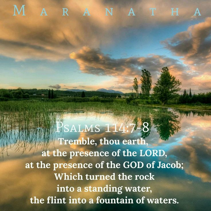 #Psalms 114:1-8 (KJV)  Tremble, thou earth, at the presence of the Lord, at the presence of the God of Jacob; Which turned the rock into a standing water, the flint into a fountain of waters.  #MARANATHA