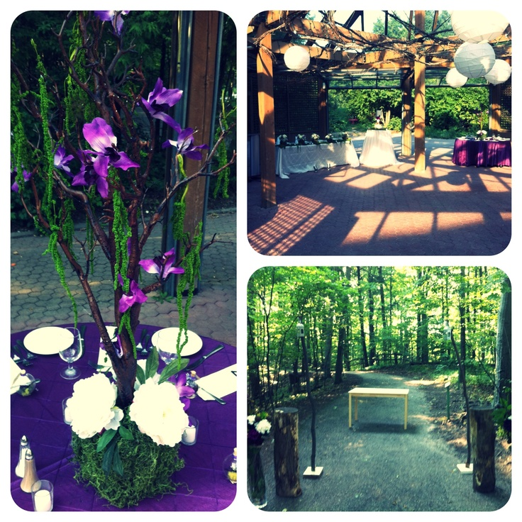 Kortright Centre for Conservation - absolutely beautiful setting for an outdoor wedding!