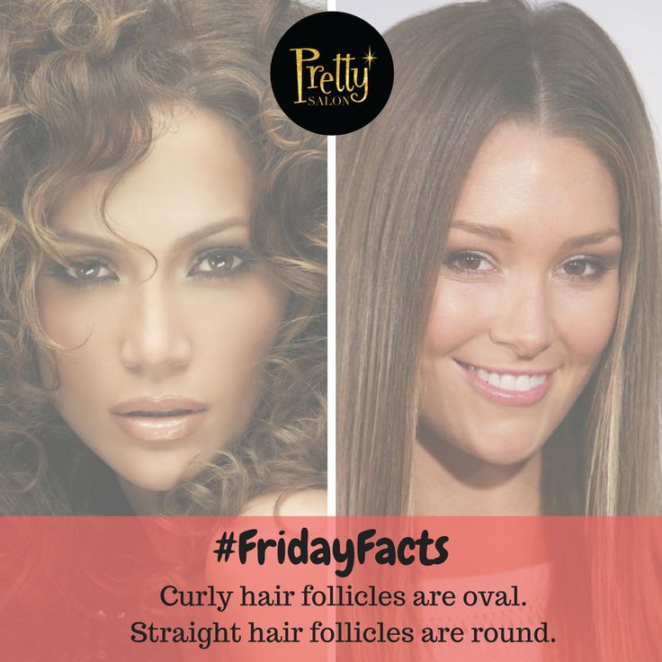 What shape are your hair follicles? FridayFacts Friday