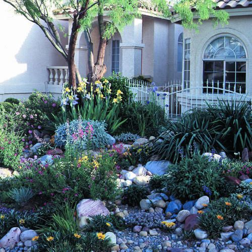 Water-wise landscaping on a small Las Vegas lot - Sunset.com