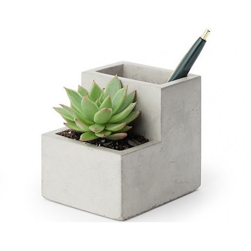 Bring some greenery to your workspace with this concrete planter & pen holder.