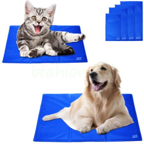 Dog Bed Pad
