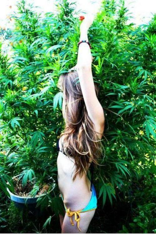 Marijuana sex porn