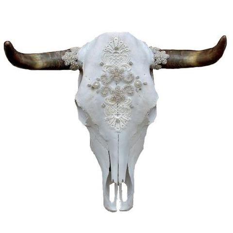 Download Bones - Child of Wild | Cow skull, Skull, Cow