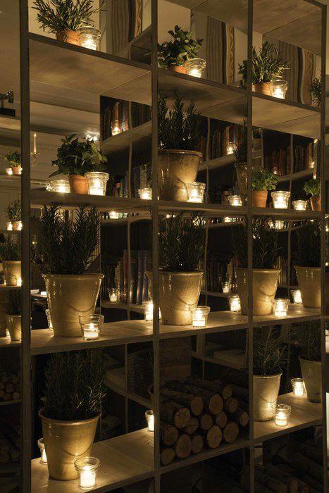 Shelves, Plants, Restaurant.  A mini planting area.
