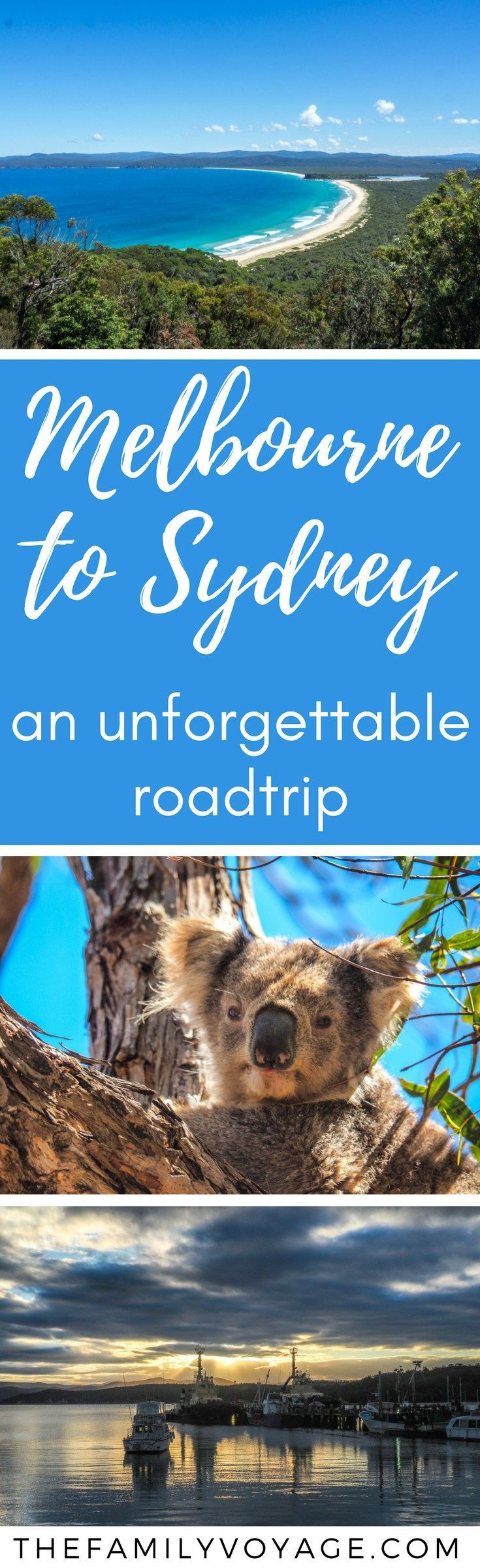 Our Australia roadtrip from Melbourne to Sydney was truly unforgettable! We saw wild kangaroos and koalas, swam at secluded coves and visited lighthouses and rocky cliffs. Don't miss this spectacular drive! Our ultimate Sapphire Coast road trip planner will tell you what to see and where to stop. Stop dreaming, get driving. #Australia #travel #travelplanning #familytravel #sydney #melbourne #roadtrip