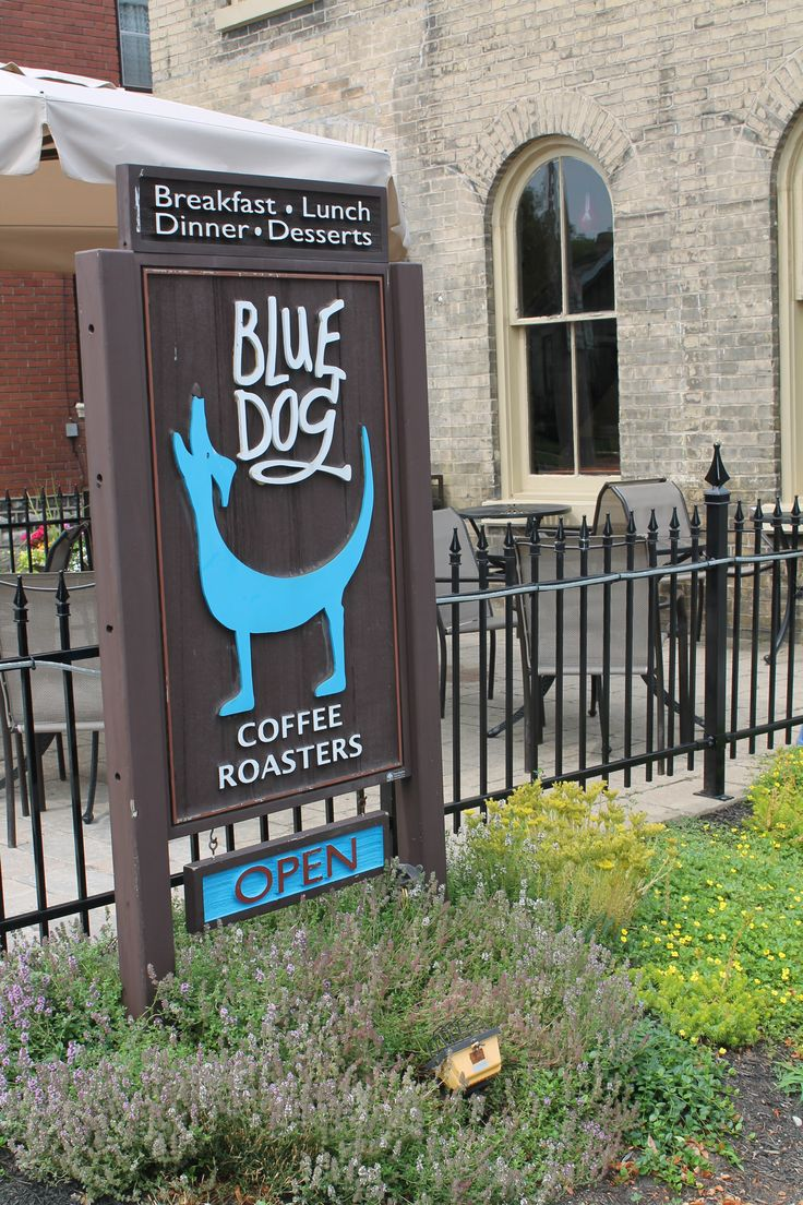 Blue Dog Coffee Roasters Cafe Paris On