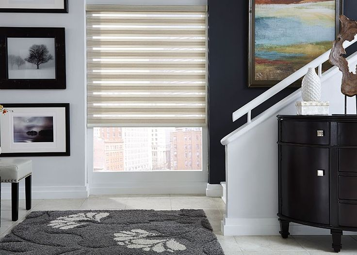 Budget Blinds Light Control Sheer Shades