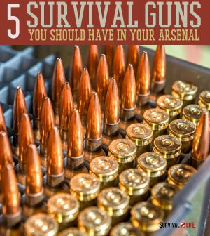 The 5 Absolute Best Survival Guns | Survival Prepping Ideas, Survival Gear, Skills & Preparedness Tips - Survival Life Blog: survivallife.com #survivallife