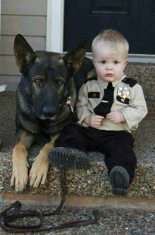 Herr Direktor S Son Cute Animals Dogs Funny Animals