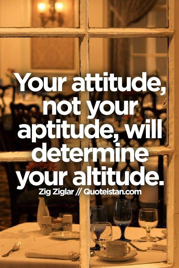 Attitude and not your aptitude decides your altitude Essay Sample