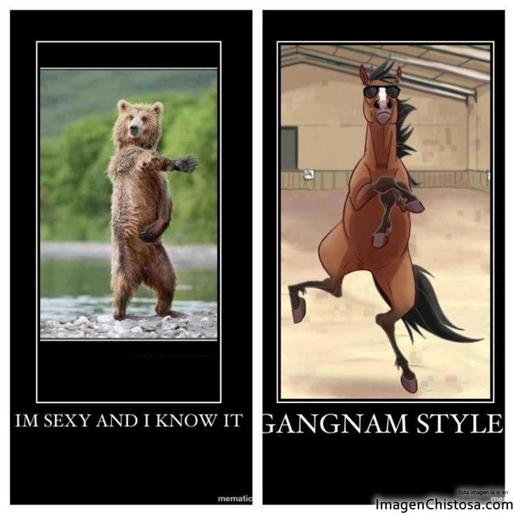 Im Sexy gangnam