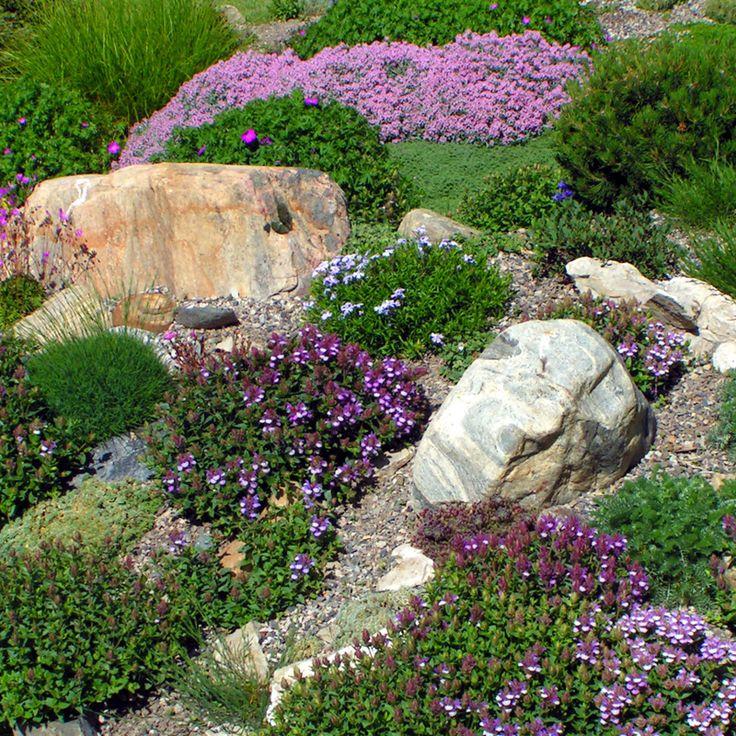 Top 70 Best Desert Landscaping Ideas: 25+ Best Ideas About Xeriscaping On Pinterest