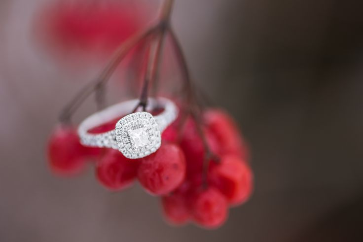 Halo engagement ring on winter berries