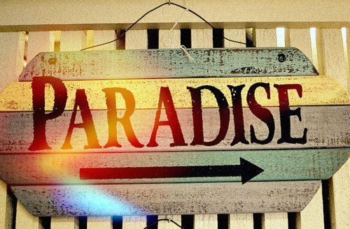 : Favorite Places, Heart, Quotes, Style, Summer Paradis, Sweet Summertime, Summer Lovin, Para Paradise, Cookies Jars
