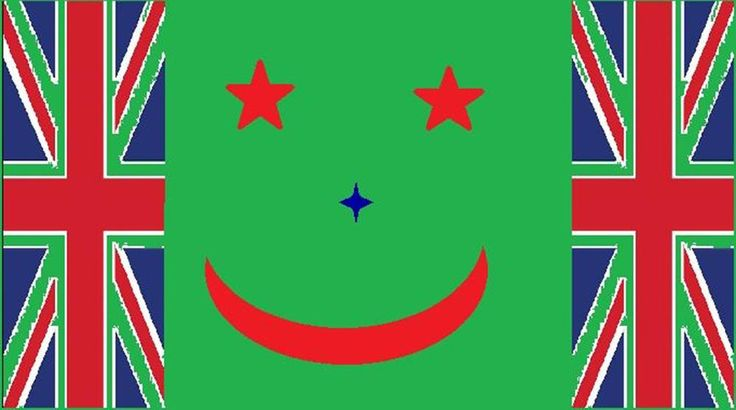 Jacob James NZ flag - Provided by Guardian News