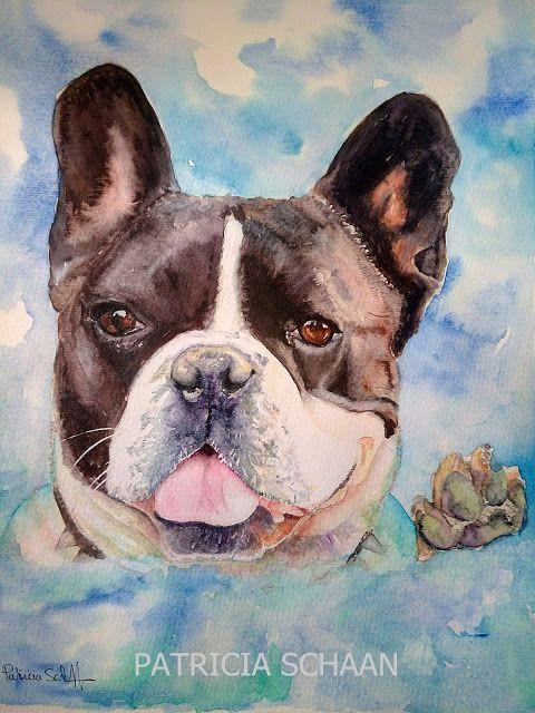 ACUARELAS Y RETRATOS DE GALGOS Y ALGO MÁS  Mi mundo ,mis aficiones  ,sobre un bloc de acuarela .: FRANCO, el Bulldog francés, desde el cielo...