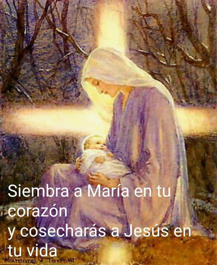 Contigo voy Virgen pura Y en tu poder voy confiad@