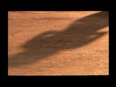 Saturday Superhouse - YouTube