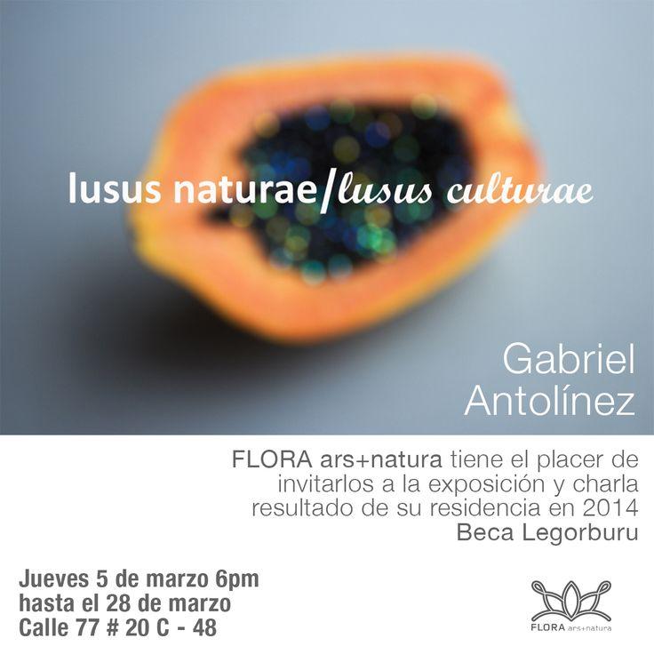 Flora ars+natura invita a la inauguración de la exposición 'Lusus naturae/lusus culturae' del artista Gabriel Antolinez, resultado de su residencia bajo la Beca Legorburu. Jueves 5 de marzo, 6:00 p.m.